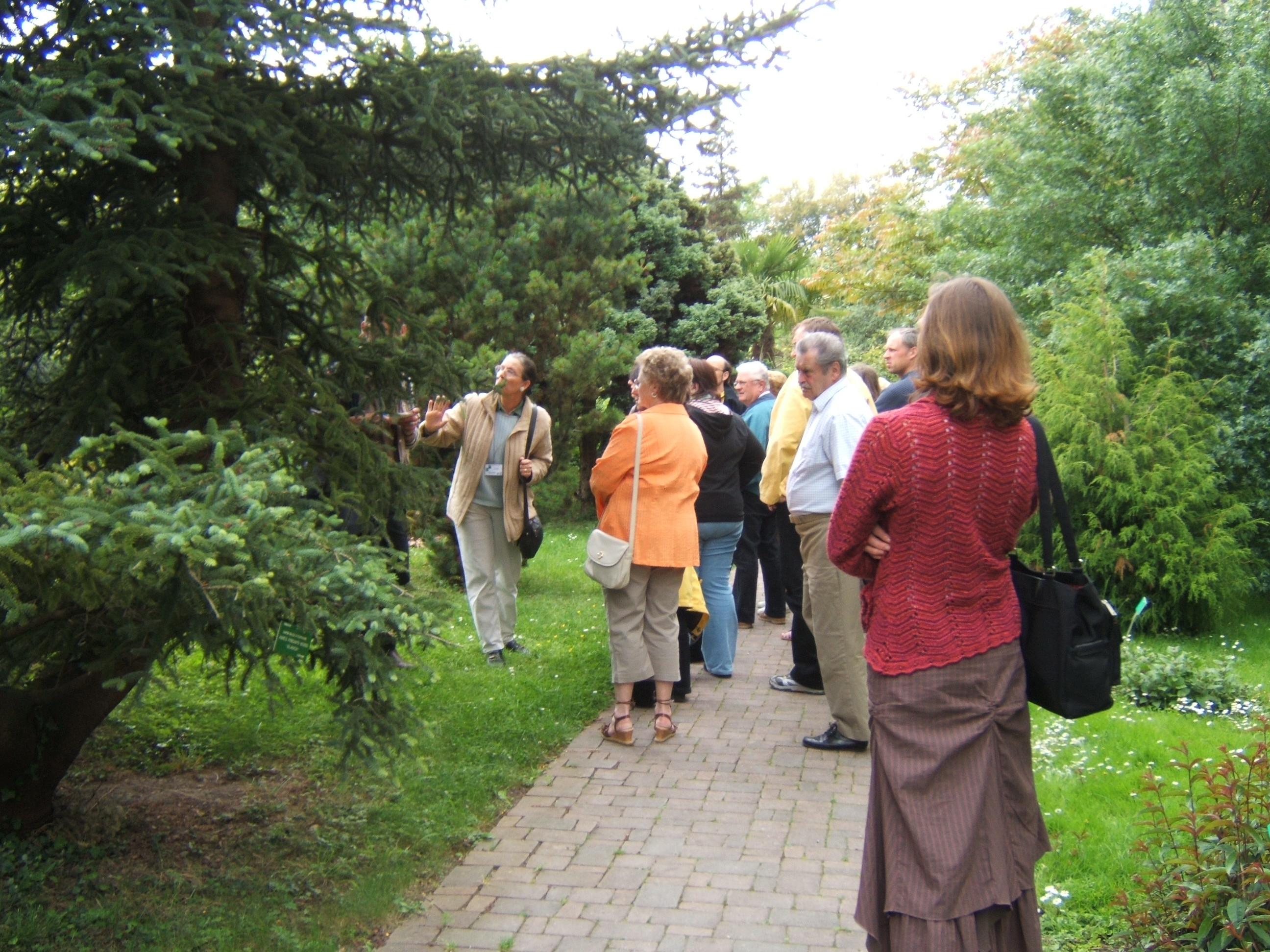 L 39 actu num ro 17 edition du 27 11 2009 culture art for Amis du jardin botanique